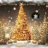 Karácsonyiképeslap2013
